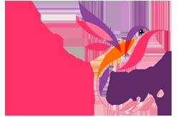 Fairy Bird — Яркие сайты!