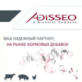 Сайт для компании Адиссео (ре-дизайн 2014)
